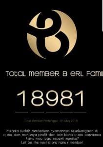 member b erl cosmetics